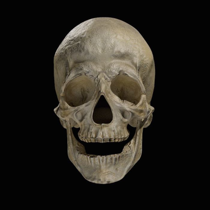 blender-lighting-mastery-skull-all