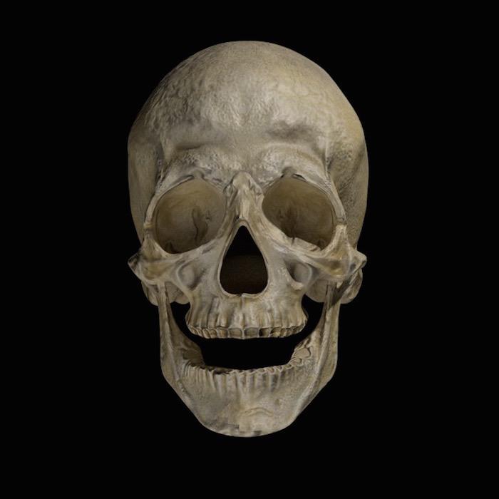 blender-lighting-mastery-skull-no-rim