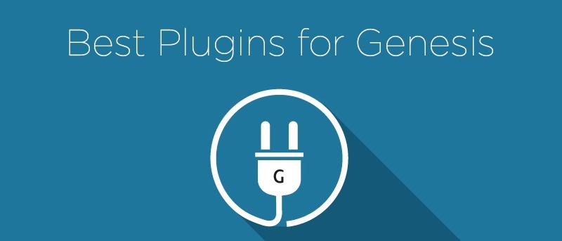 12 Best Plugins for Genesis Theme Users