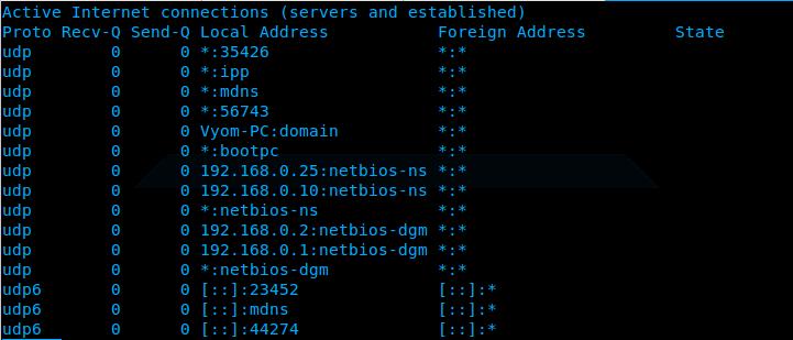 Ubuntu_netsta_udp_output