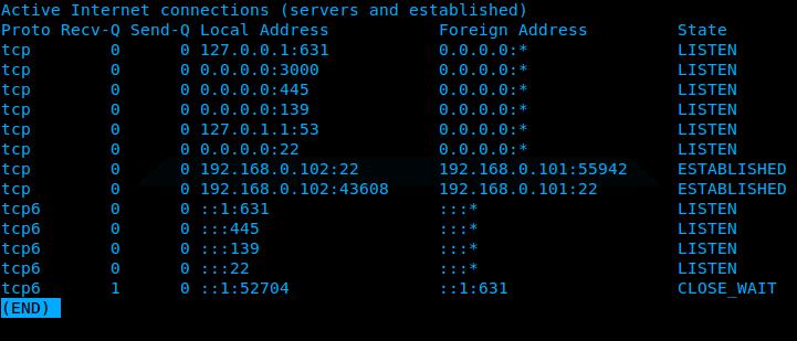 Ubuntu_netstat_dns_output