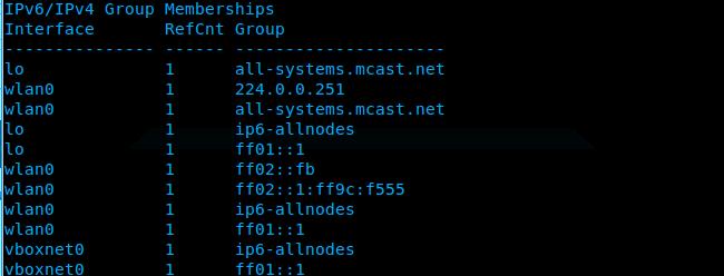 Ubuntu_netstat_multicast_output