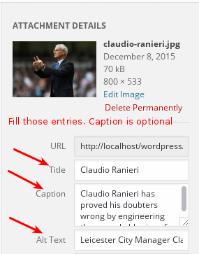 wp-image-optimization-tagging