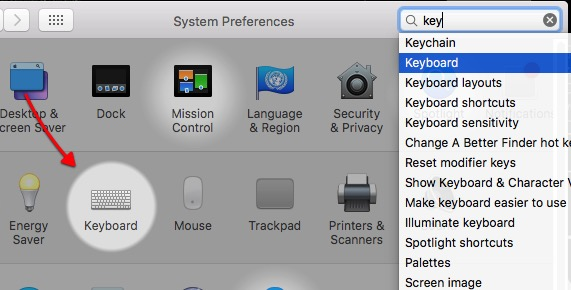 Liquid | Infor -mte- System Preferences