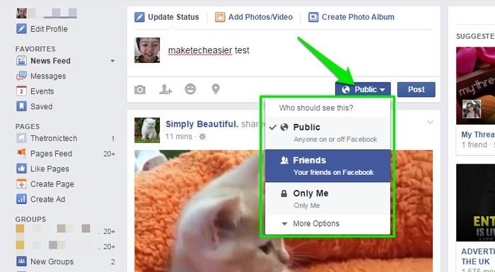 Facebook-Status-Public-or-Friends