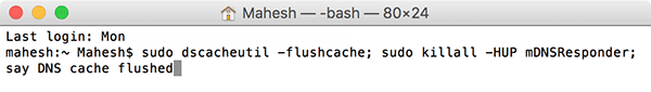 dnscache-command