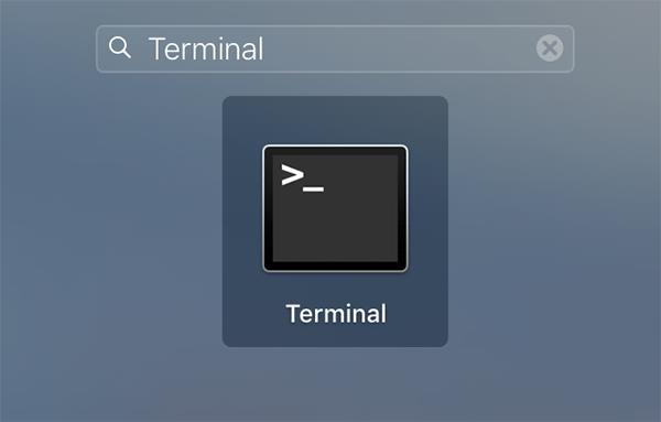 emptytrash-terminal