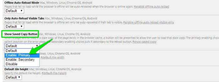 Best-Chrome-Features-Enable-Offline-Mode