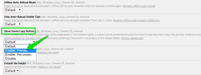 Best-Chrome-Features-Enable-Offline-Mode