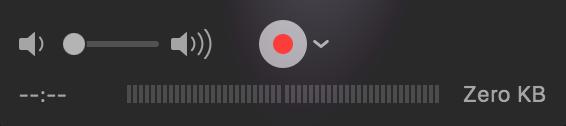 recordiphone-record