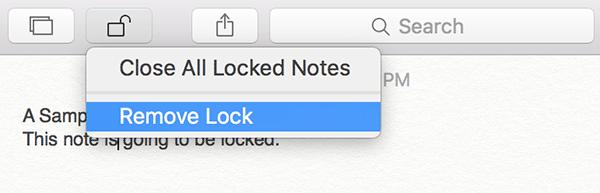 locknotes-remove