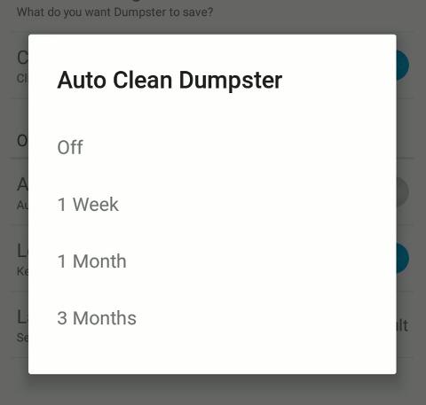 Dumpster_Auto_Clean