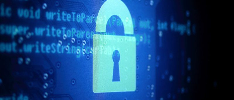 No One is Exempt: 6 Important Privacy Habits Everyone Should Practice