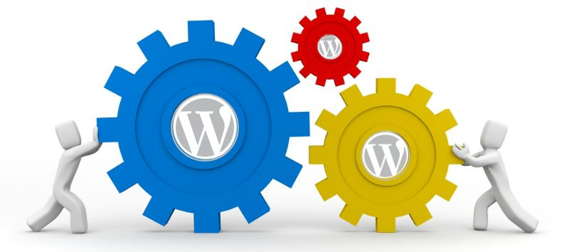 avoid-user-errors-wordpress-themes-1