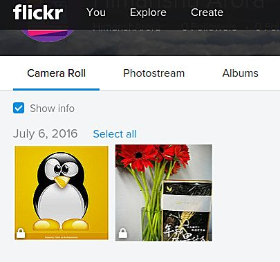 frogr-flickr-uploaded