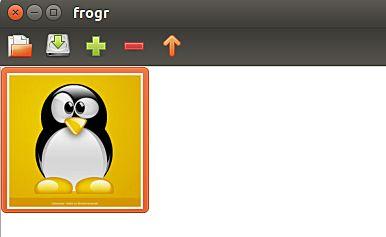 frogr-upload-photo
