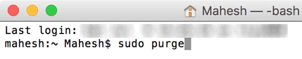 purge-sudopurge
