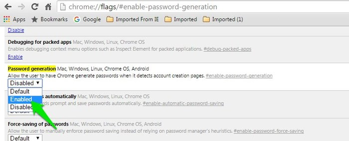 Chrome-Flags-Password-generation