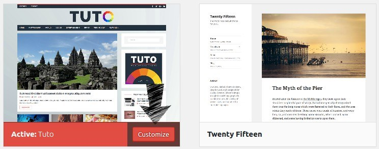 Customize your WordPress theme.