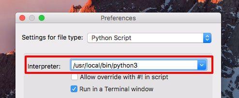 python-3-interpreter-path