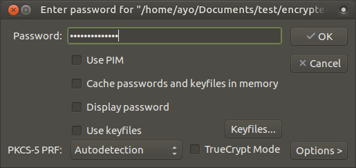 "Enter password for ""-home-ayo-Documents-test-encrypted""_054"