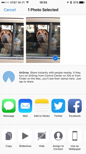 You can share your photos and videos to just about any social media network or perform many actions with iOS 10+'s Photos app.