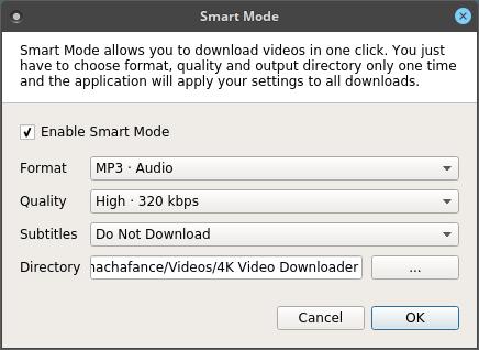 4k-video-downloader-smart-mode
