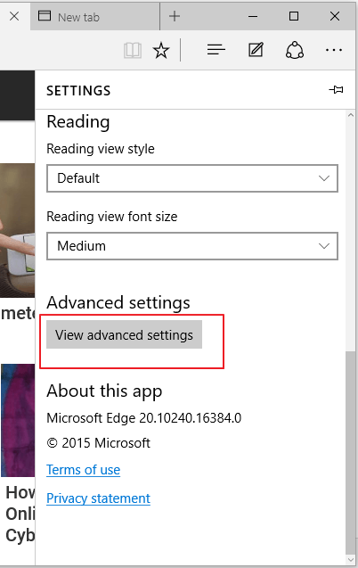microsoft-edge-view-advanced-settings