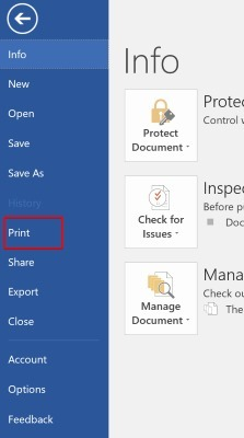 print-pdf-option