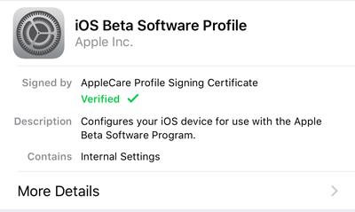ios beta profile install