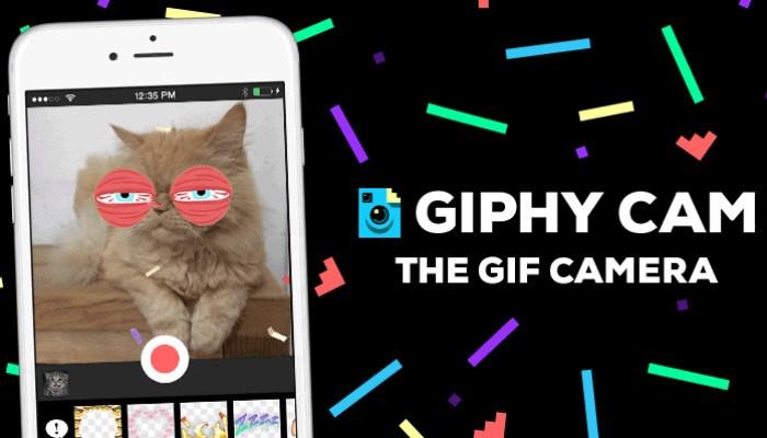 gif-giphy-cam