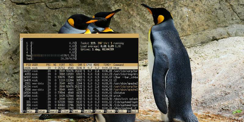 Linux Wallpaper Wal