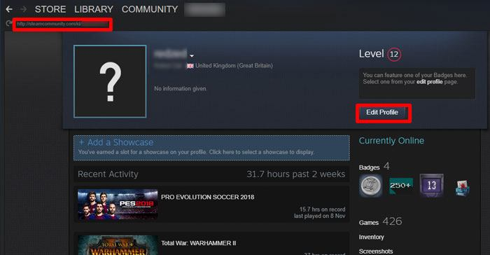how-to-find-steam-id-display-url-x