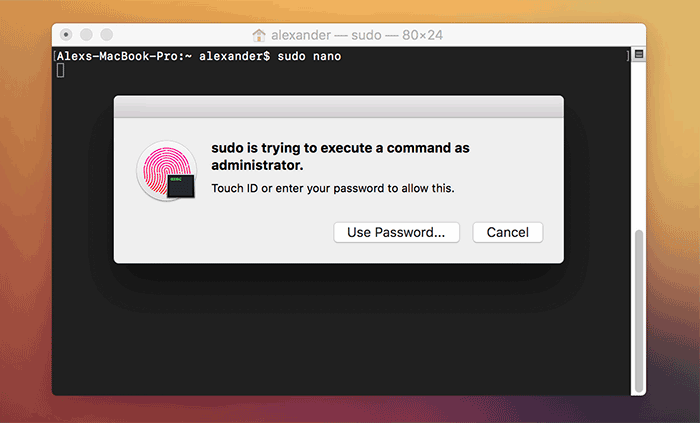 terminal-sudo-touch-id-4