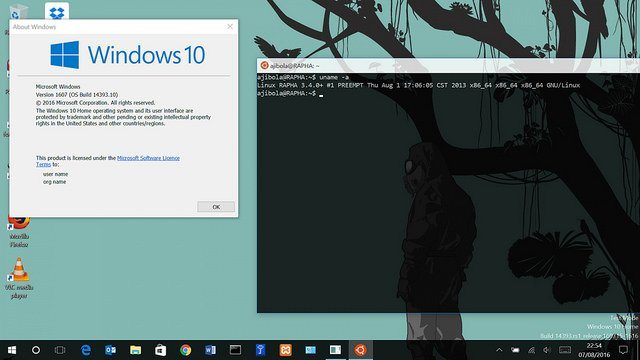 How to Install the Linux Subsystem for Windows 10 - Make