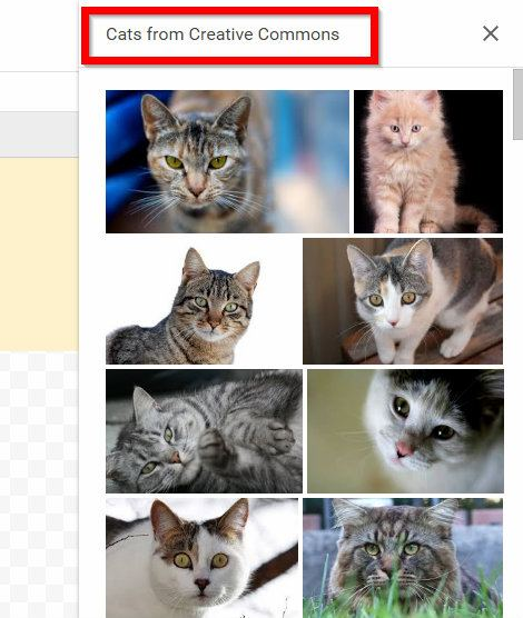get-creative-with-google-drawings-annotated-diagrams-cats-cc