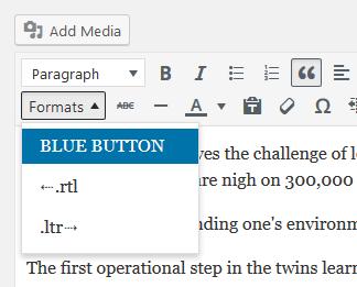 wp-post-editor-style-option-2