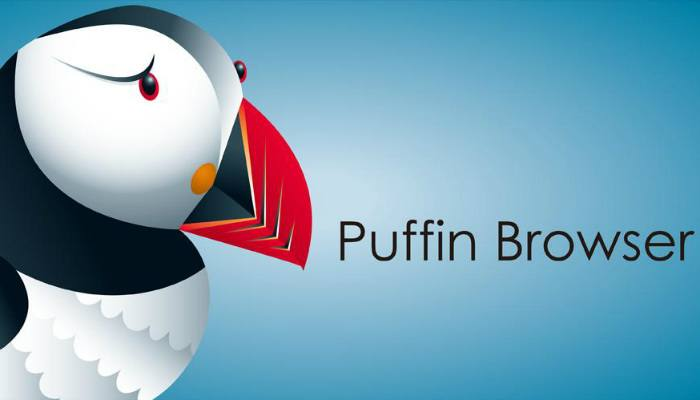 fast-browser-puffin
