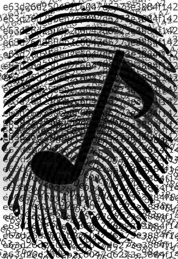 music-fingerprint