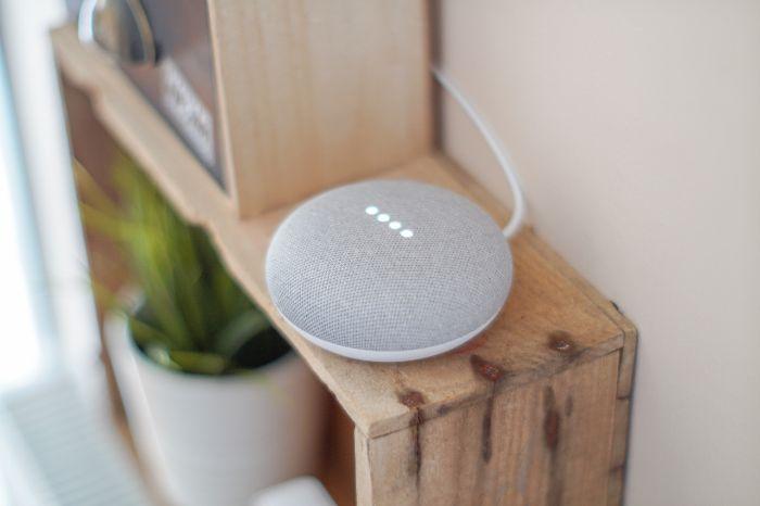 google-assistant-voices-speaker