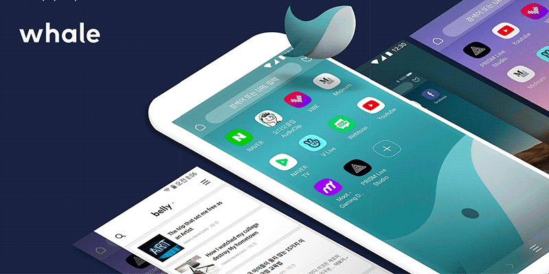 whale-featured