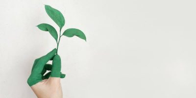 4 Simple Apps to Help You Become More Environmentally Friendly