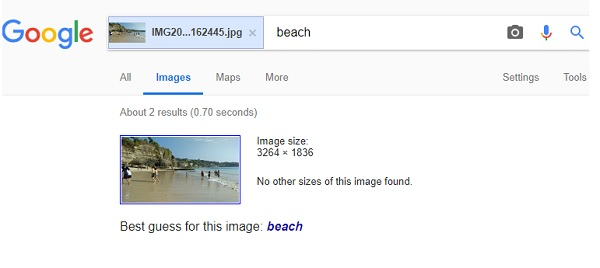Visual image search by Google Reverse Search Engine