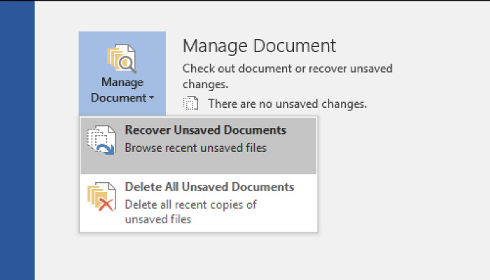 word-recover-manage-documents