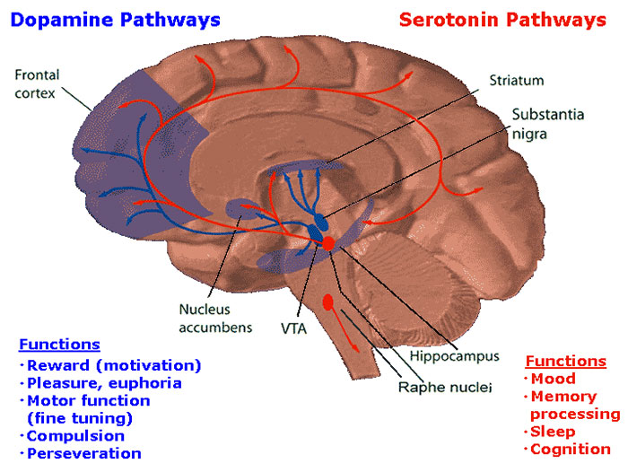 addictive-game-design-dopamine