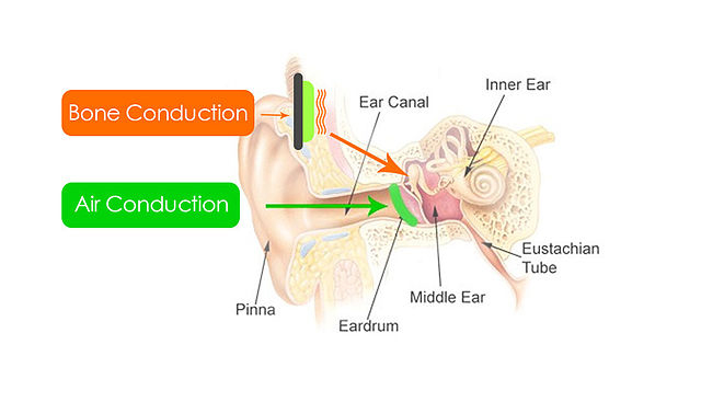 bone-conduction-mechanism