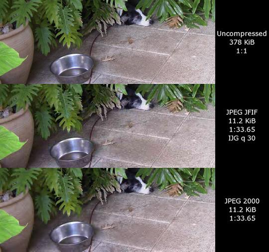 image-formats-jpeg
