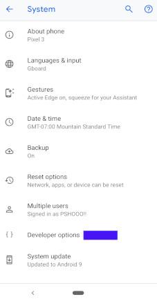twrp-developer-options