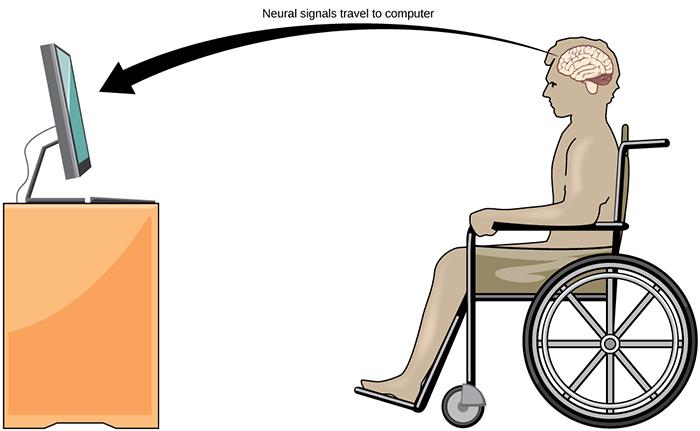 human-tech-brain-computer