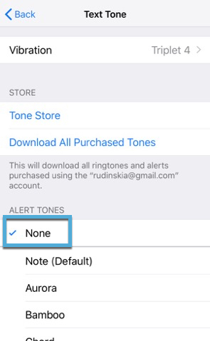 How to Turn Off Outgoing Message Sound on Your iPhone - Make